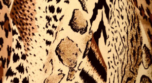 A close-up of leopard printed fabric.