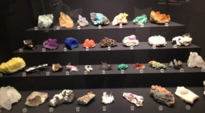 Collection of different kind of rocks showcased in glass cabinet.